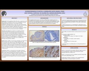 Official 2009 USCAP Poster Submission - K. Robstad